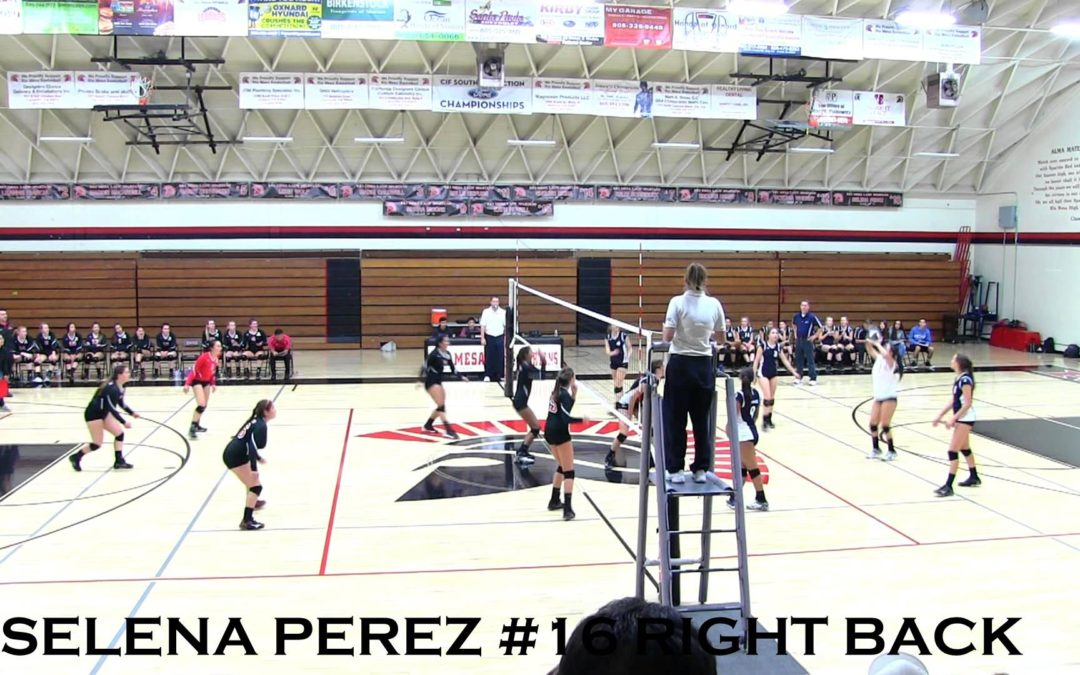 Selena Perez High School Volleyball Recruit